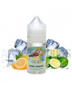 Citrus Punch Ice 30 ml...