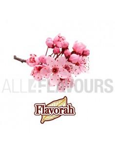 Cherry Blossom 10ml Flavorah